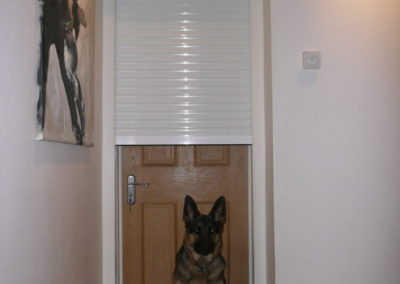 Internal security shutter in Brentwood to prevent burglars.